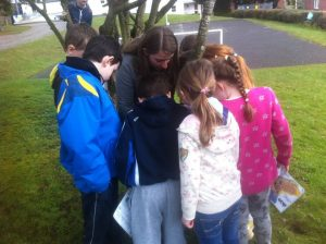Reading Maps - Picture Orienteering