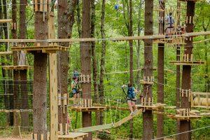 Tree Top Adventure Team Building Activity Pinterest