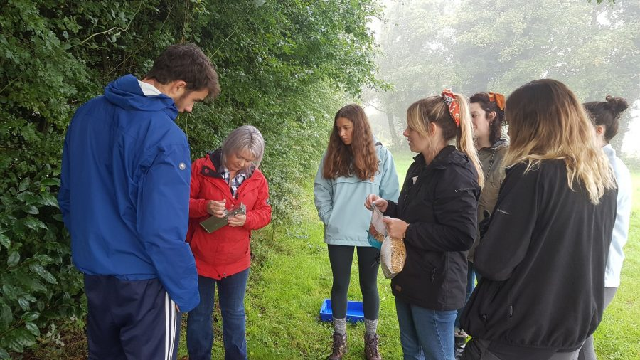 Using Longworth Traps at our Environmental Field Studies Centre