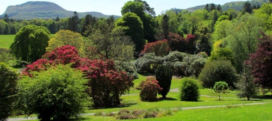 Florencecourt Pleasure gardens