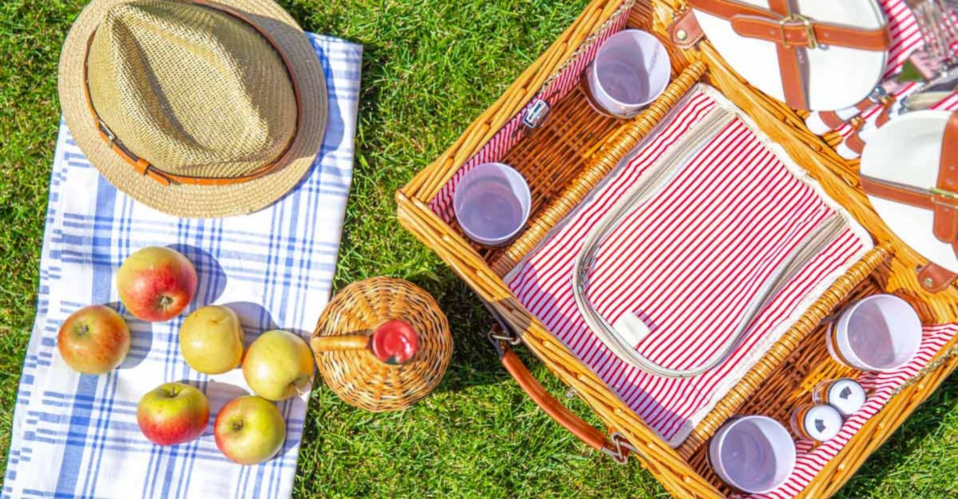 Picnic gear for a holiday